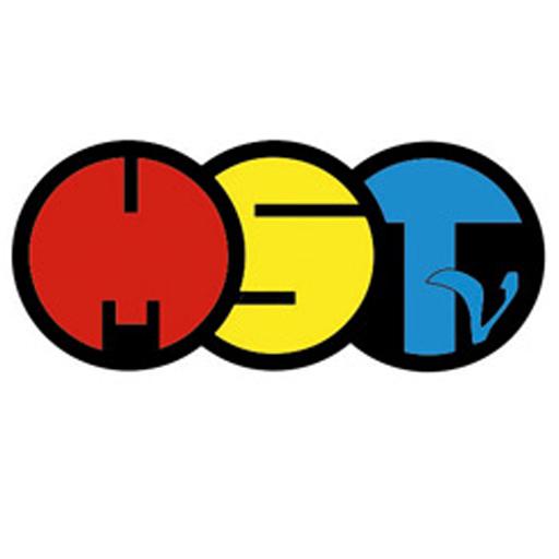 logo_mittelsachsen